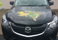 Digital Printing Car